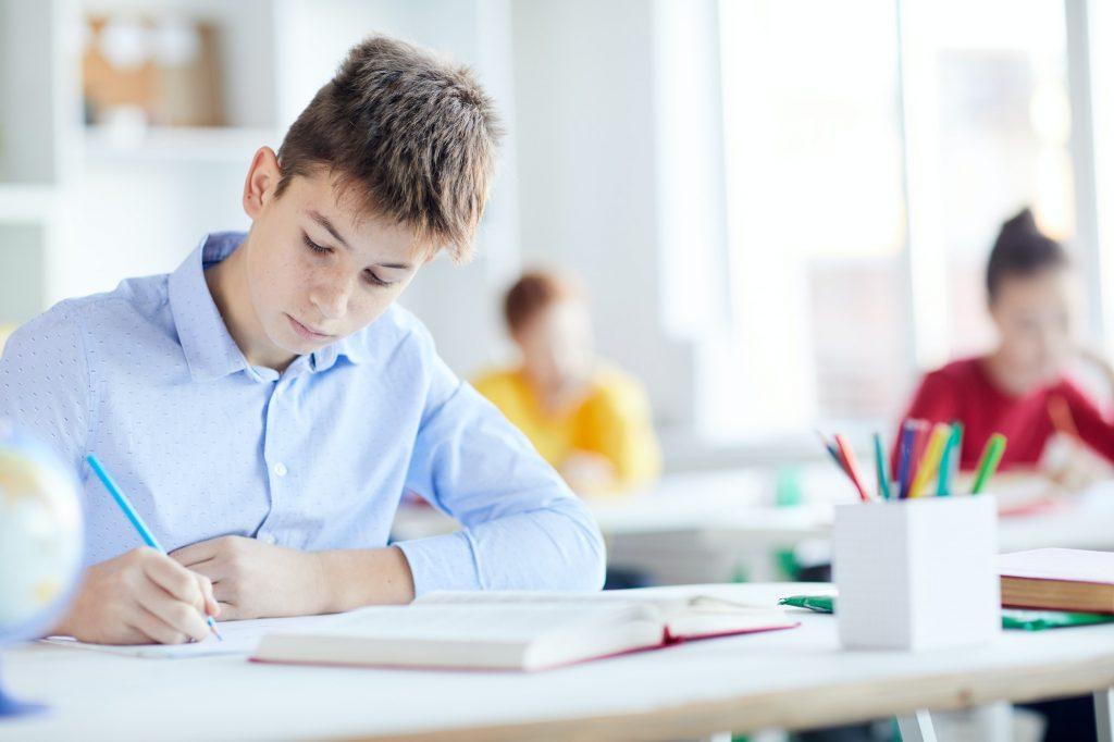 Boy making notes